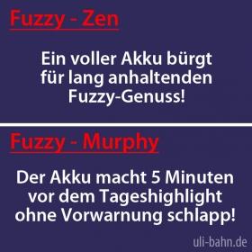 Fuzzy Rule No. 006 - Akku